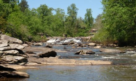 Keep Forsyth County Beautiful Offering Free Adopt-A-Stream Workshops
