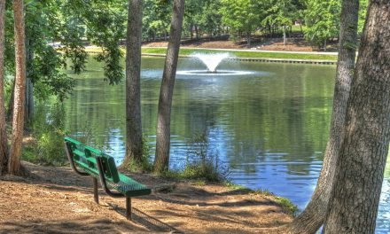 Forsyth County Parks & Recreation Comprehensive Master Plan Update Now Available