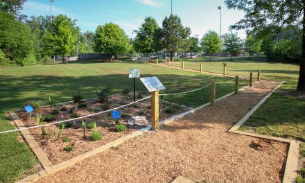 Trail for Visually Impaired Now Open at Fowler Park